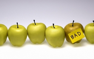 Does-one-bad-apple-spoils-the-bunch